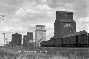 A row of box cars sit on the tracks in front of four grain elevators.