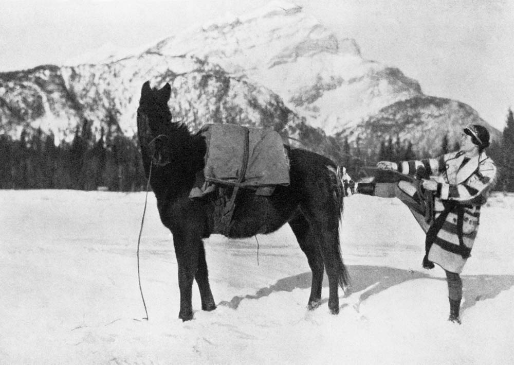 A women tightens a rope while secruing a load onto a horse's back.