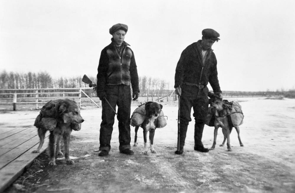 Two First Nations men stand with three dogs carrying packs.